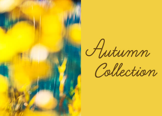 Autumn Collection|津田沼PARCO